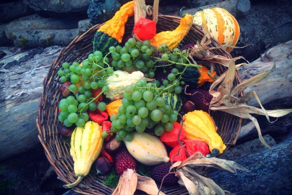 autumn-decoration-banana-color-265562.jpg