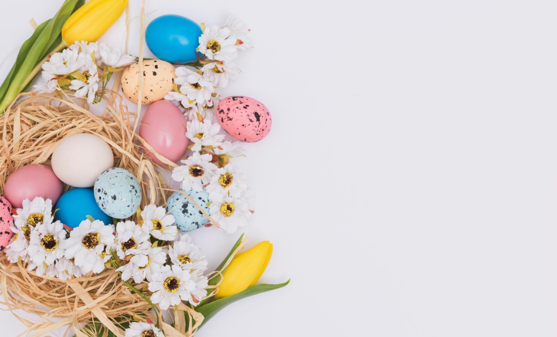 flowers-near-eggs-nest.jpg